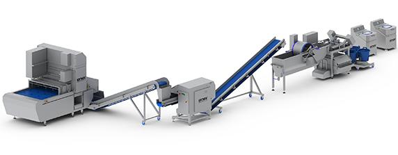 large-salad-processing-line